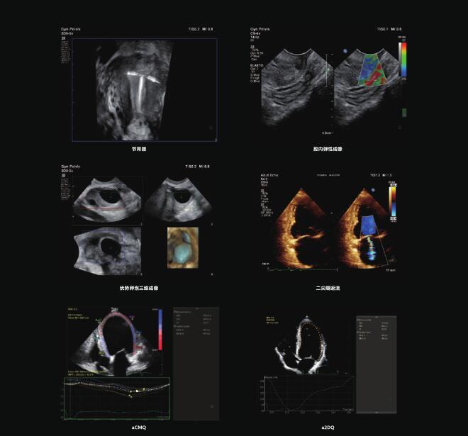 临床图2.jpg